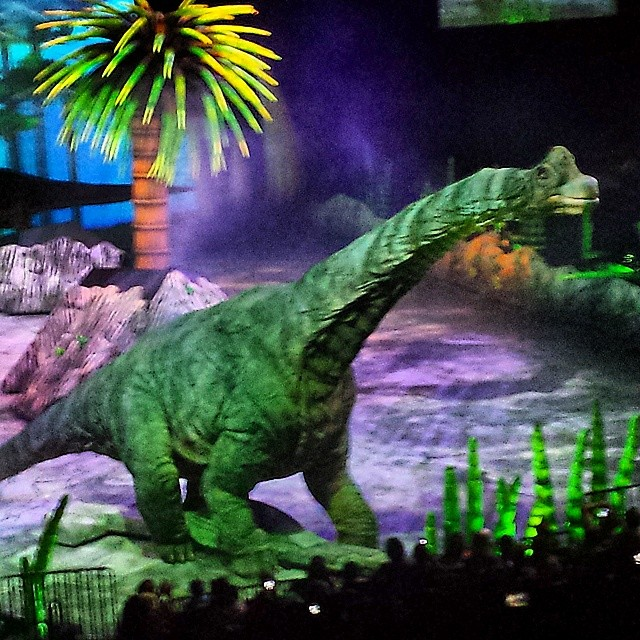 High Resolution Wallpaper | Walking With Dinosaurs 640x640 px