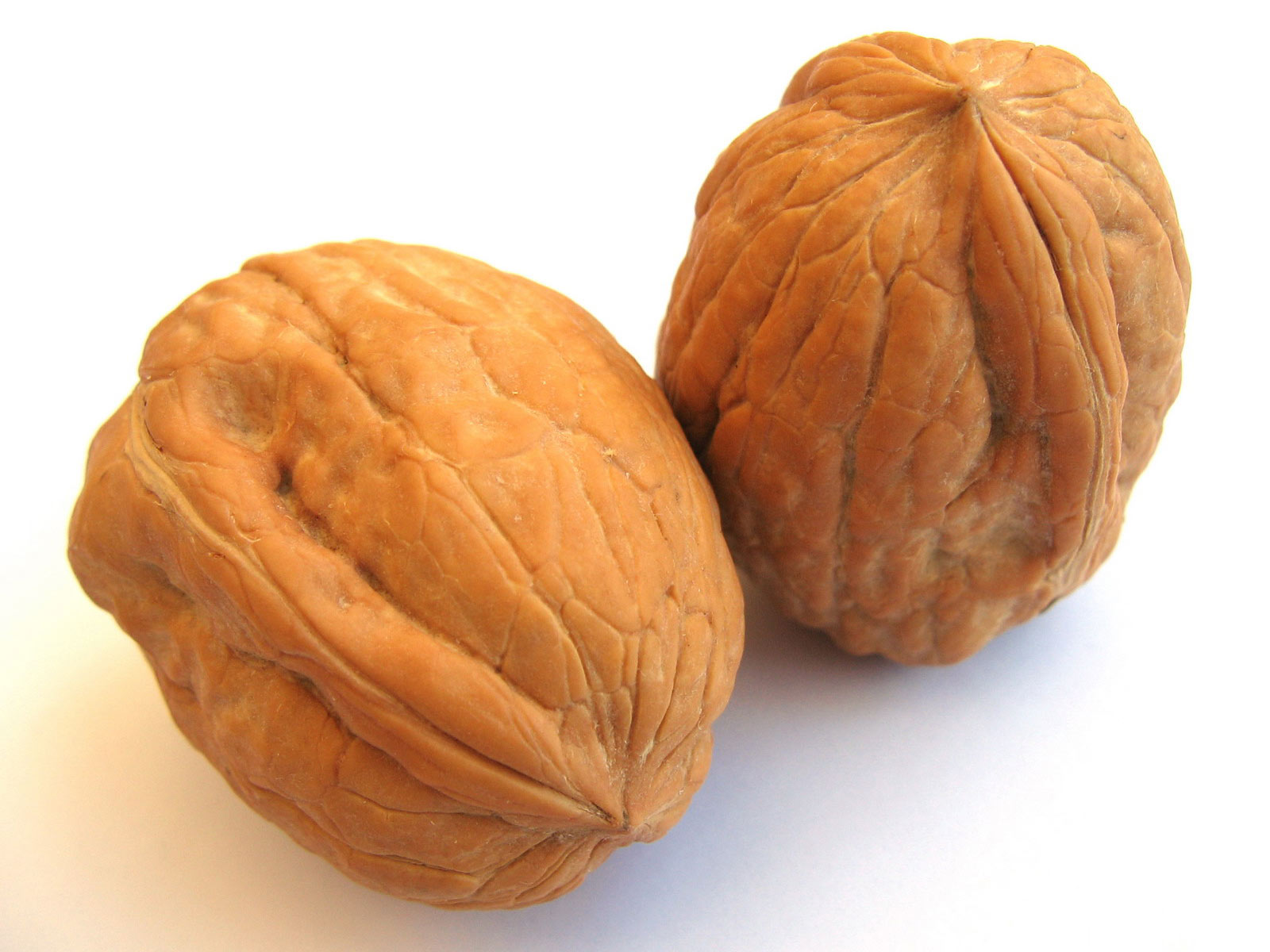 Walnut High Quality Background on Wallpapers Vista