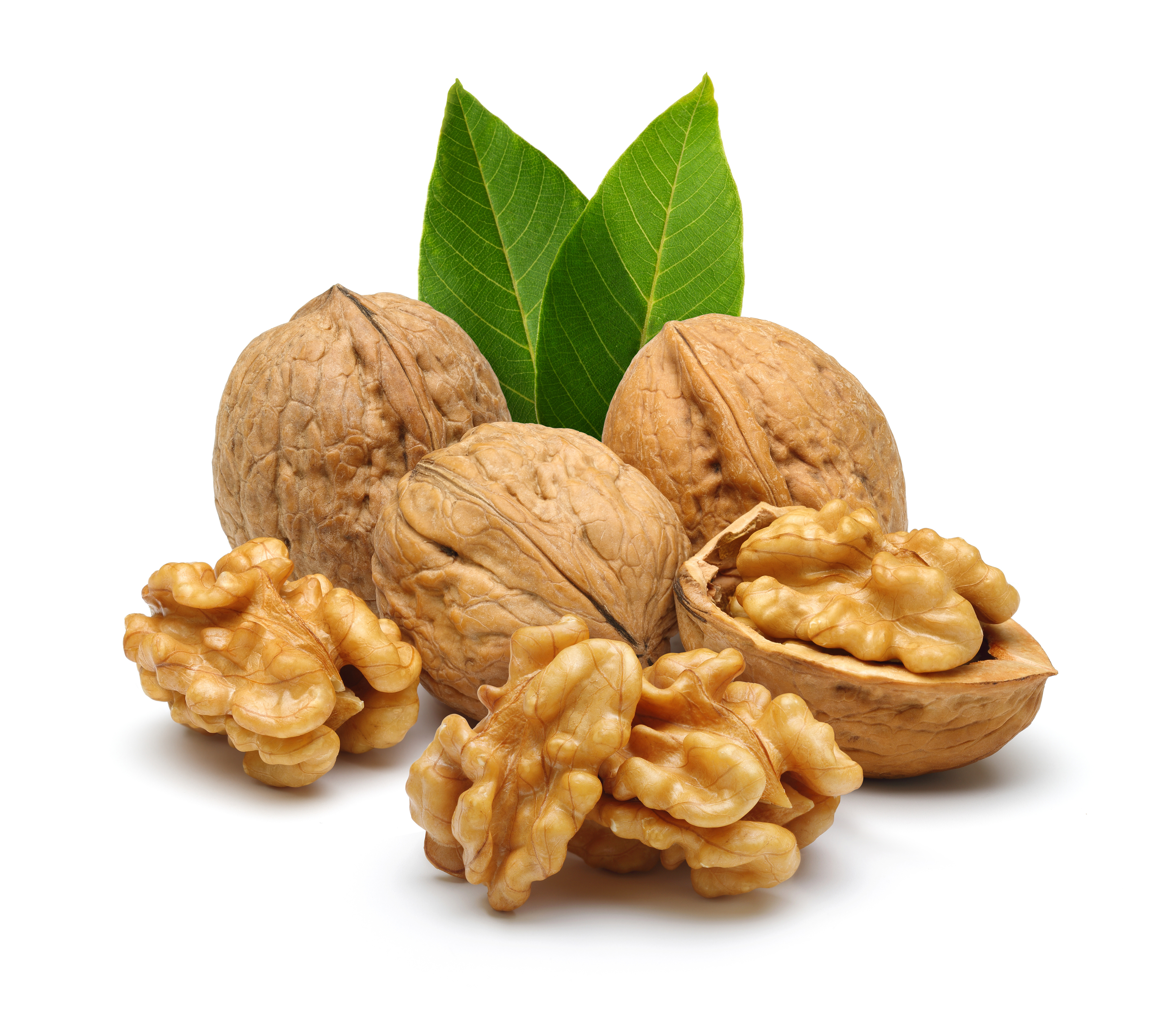 Walnut Backgrounds, Compatible - PC, Mobile, Gadgets| 4500x4031 px