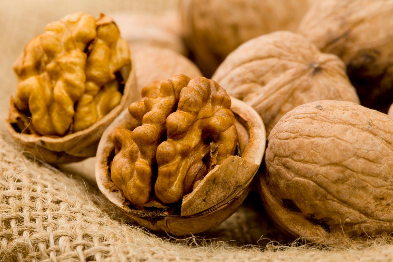 Walnut #4