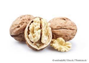 Walnut #11