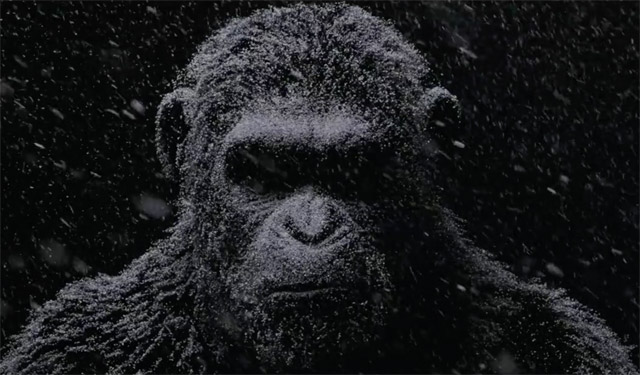 War For The Planet Of The Apes HD wallpapers, Desktop wallpaper - most viewed