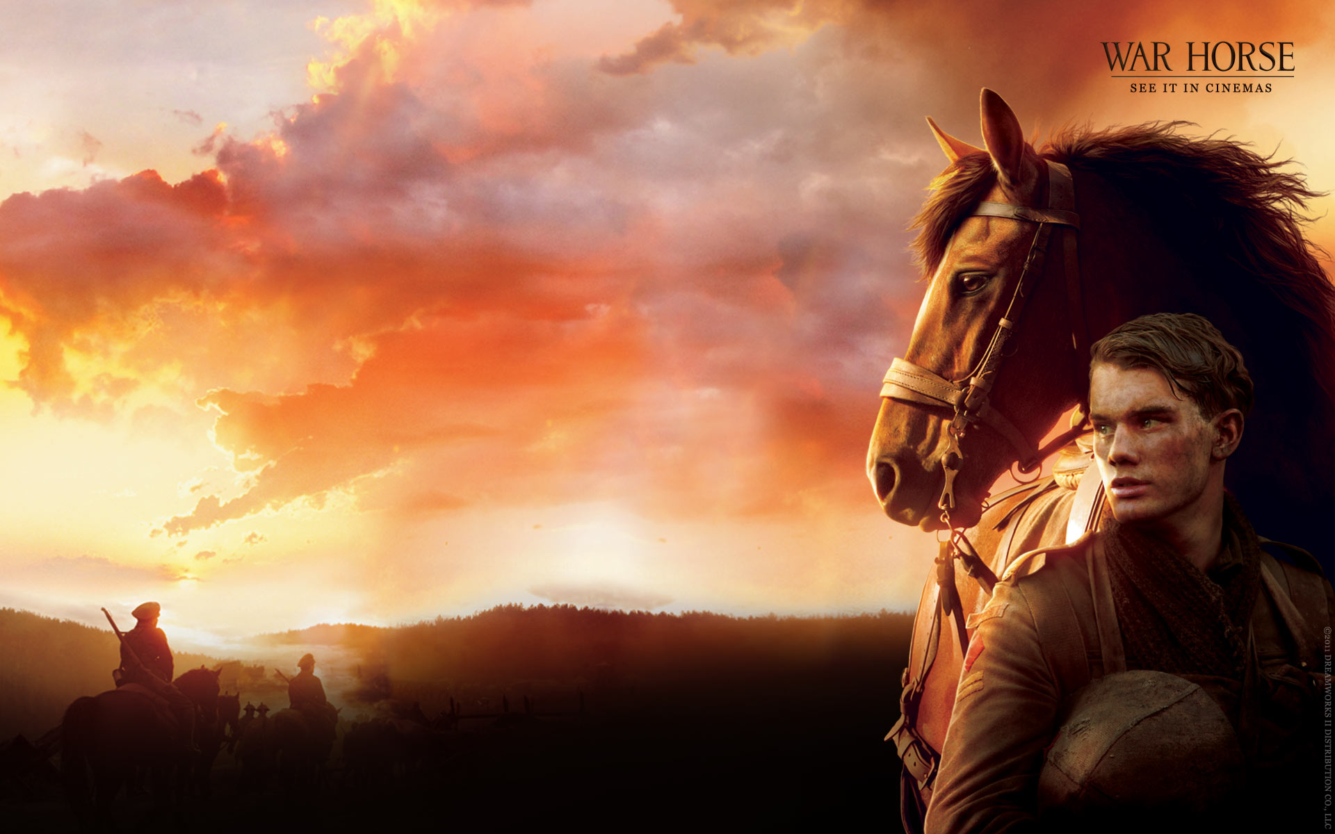 War Horse Wallpapers Movie Hq War Horse Pictures 4k Wallpapers 2019