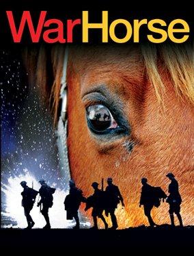 War Horse Backgrounds, Compatible - PC, Mobile, Gadgets| 284x374 px