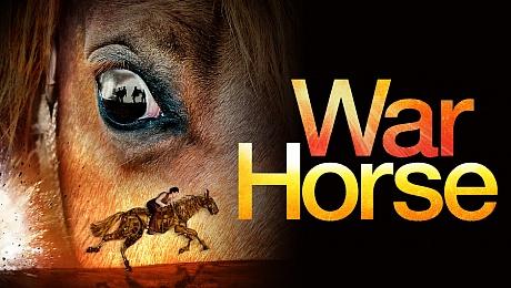 HQ War Horse Wallpapers | File 65.34Kb
