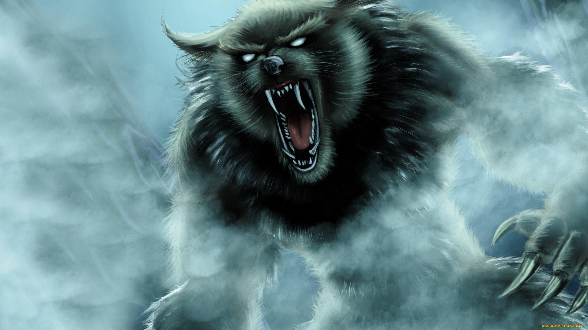 High Resolution Wallpaper | Werewolf 1920x1080 px