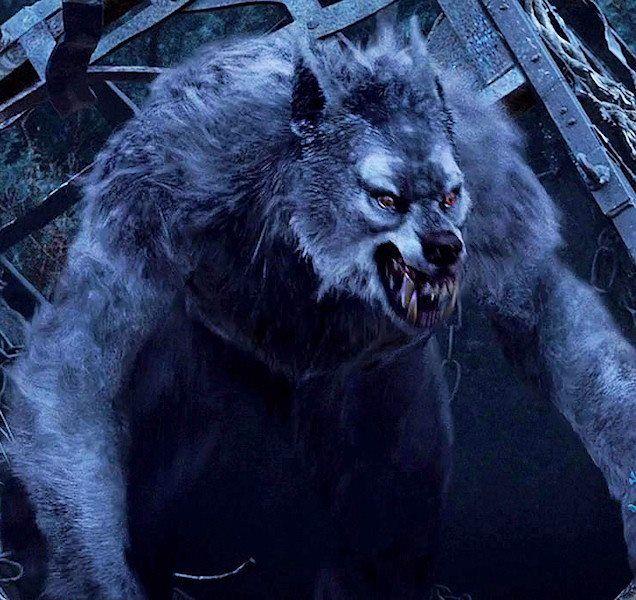 636x600 > Werewolf Wallpapers