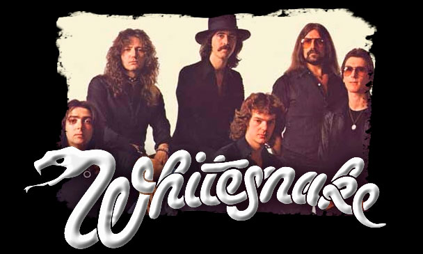 Whitesnake Backgrounds, Compatible - PC, Mobile, Gadgets| 608x365 px
