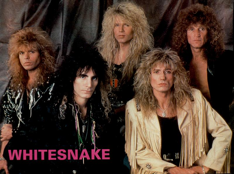HD Quality Wallpaper | Collection: Music, 800x595 Whitesnake
