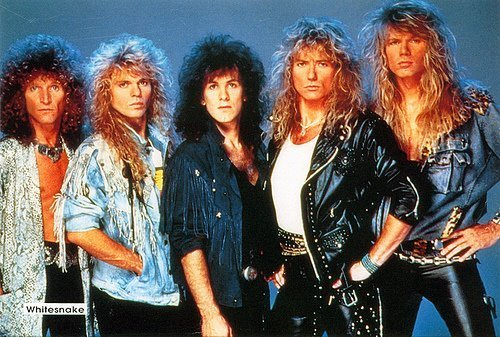 Whitesnake Backgrounds, Compatible - PC, Mobile, Gadgets| 500x337 px