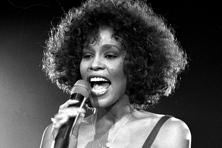 Whitney Houston Backgrounds, Compatible - PC, Mobile, Gadgets| 750x500 px