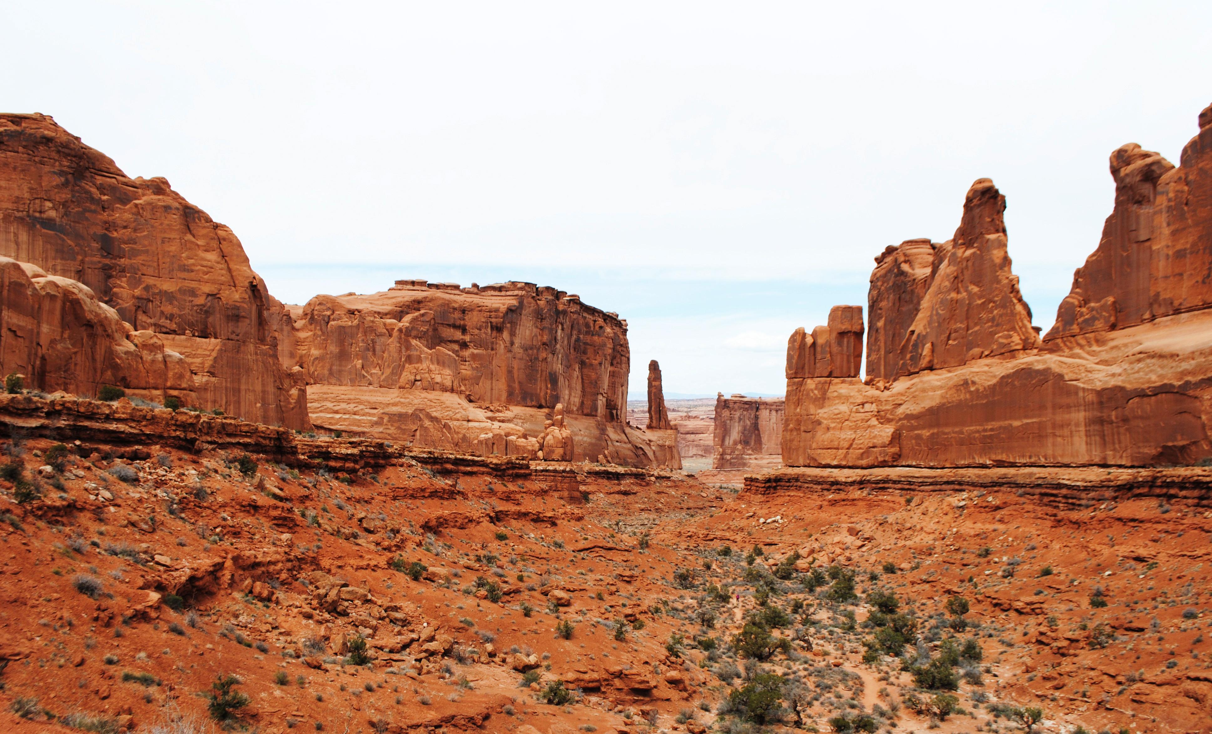 Wild West #10
