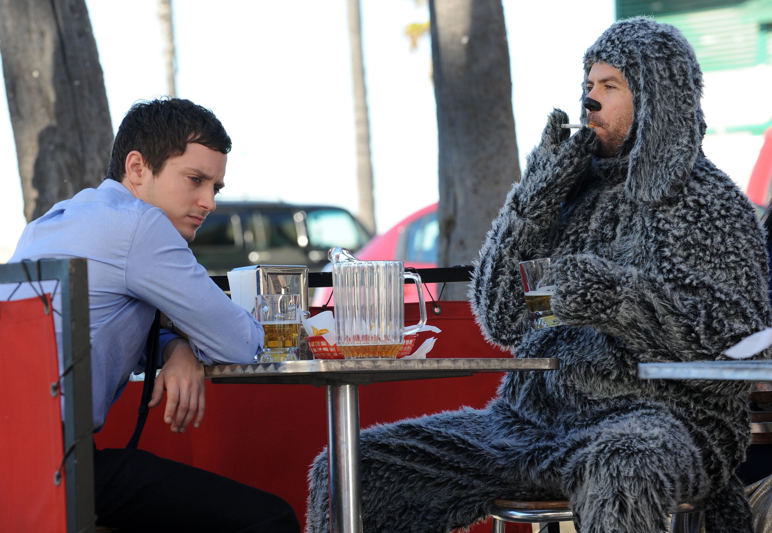 Wilfred Pics, TV Show Collection