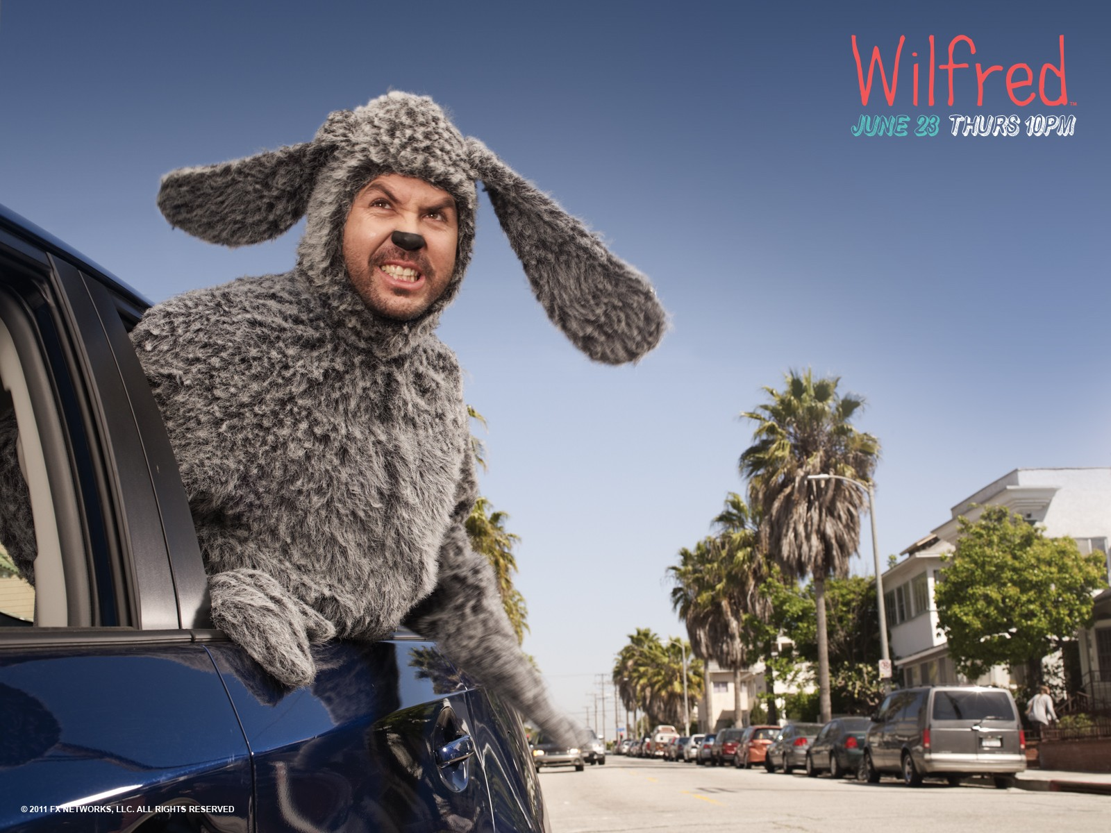 HQ Wilfred Wallpapers | File 369.42Kb