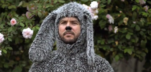 Images of Wilfred | 520x250