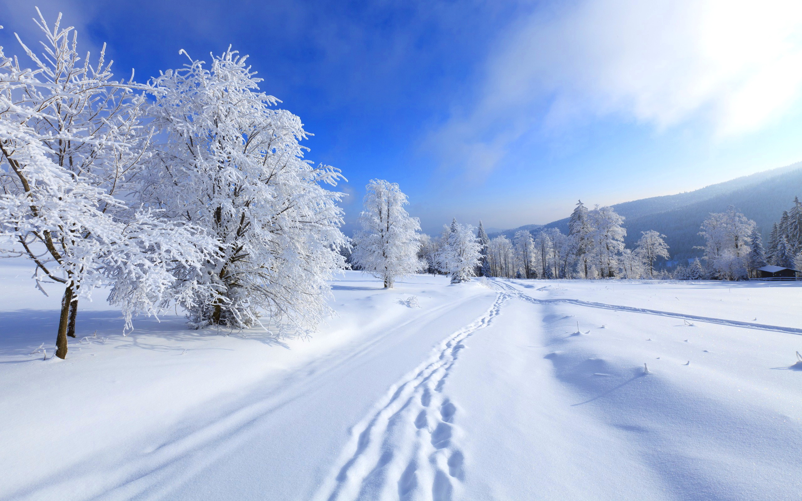 Winter HD wallpapers, Desktop wallpaper - most viewed