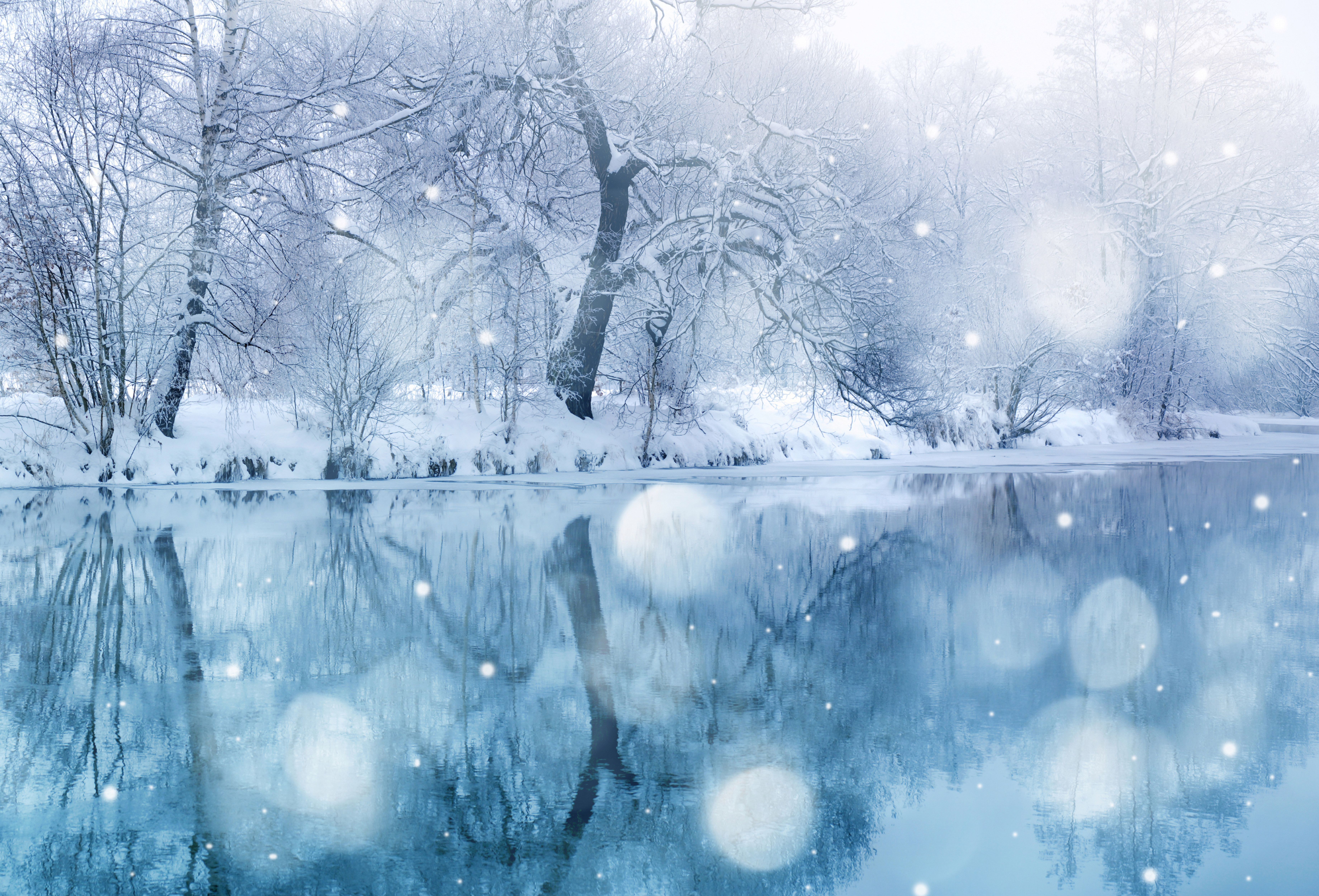 Nice Images Collection: Winter Desktop Wallpapers