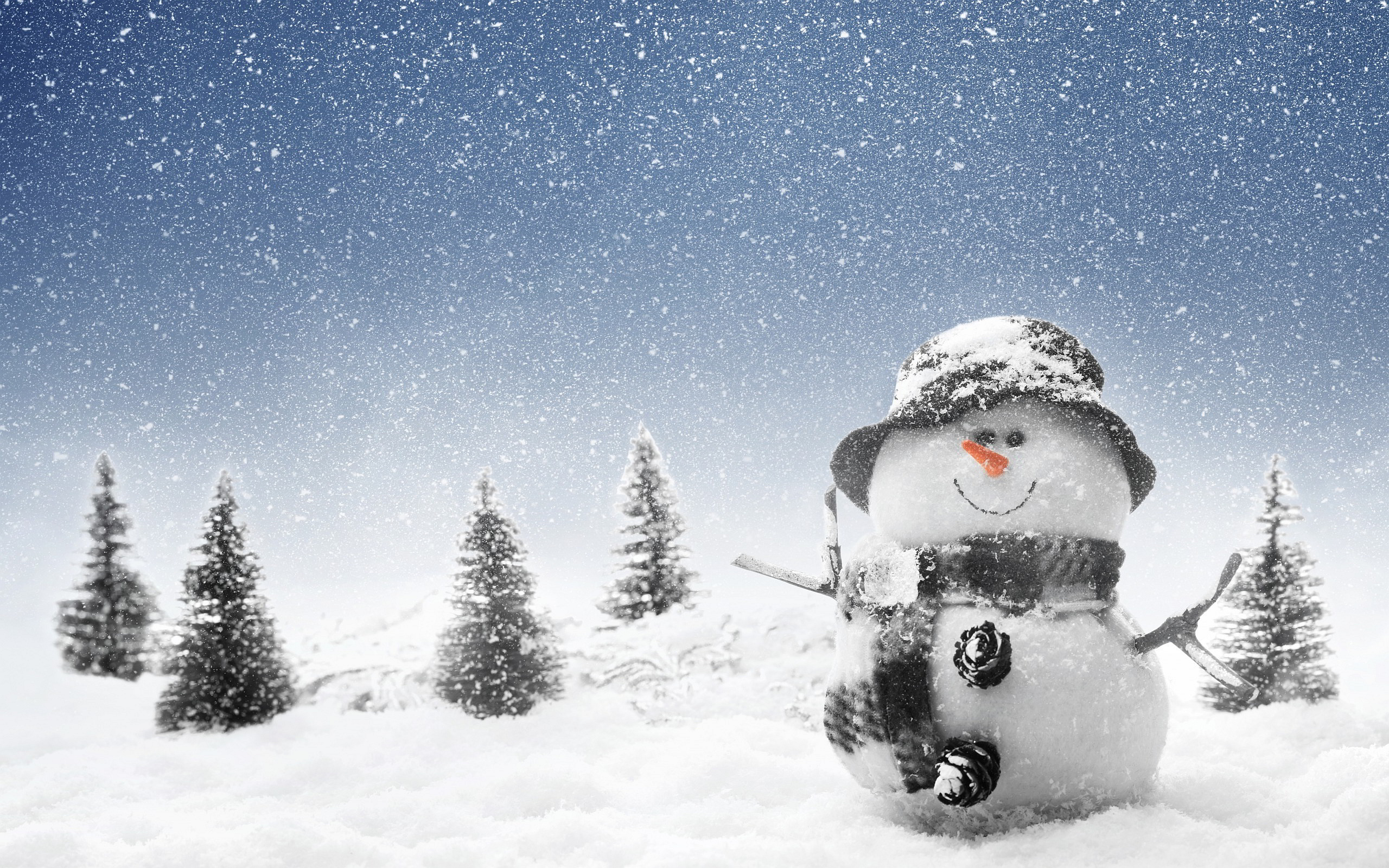 Winter Backgrounds, Compatible - PC, Mobile, Gadgets| 2560x1600 px