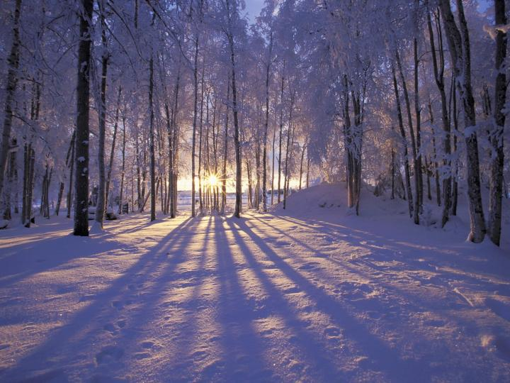 Winter High Quality Background on Wallpapers Vista