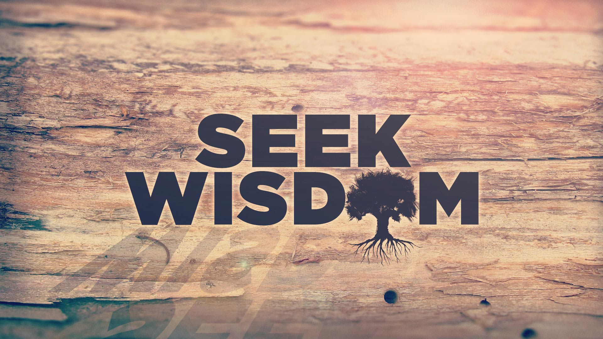 Amazing Wisdom Pictures & Backgrounds