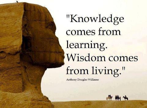 Wisdom #14