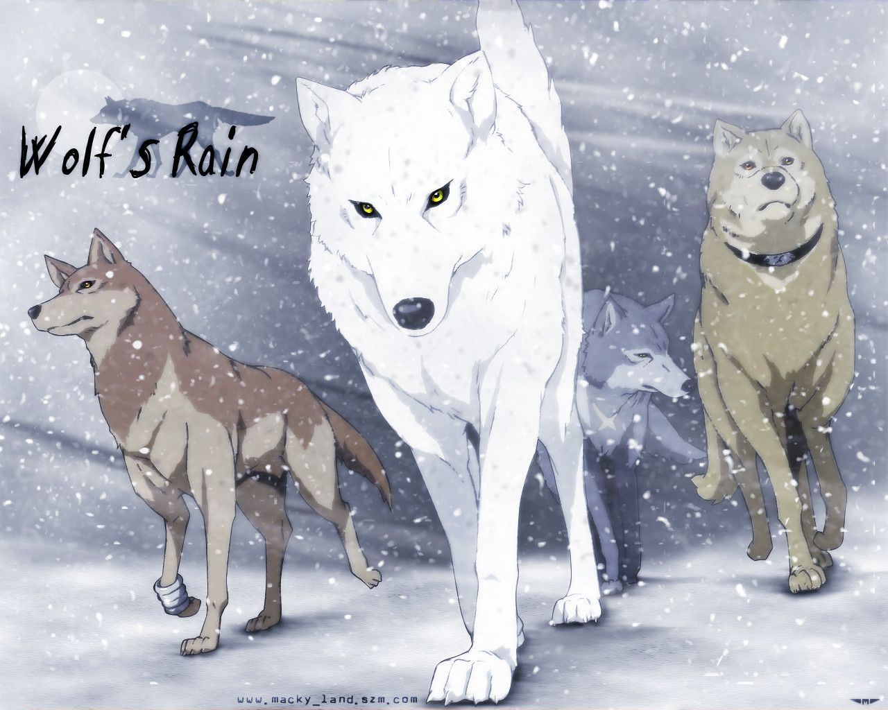 HD Quality Wallpaper | Collection: Anime, 1280x1024 Wolf's Rain