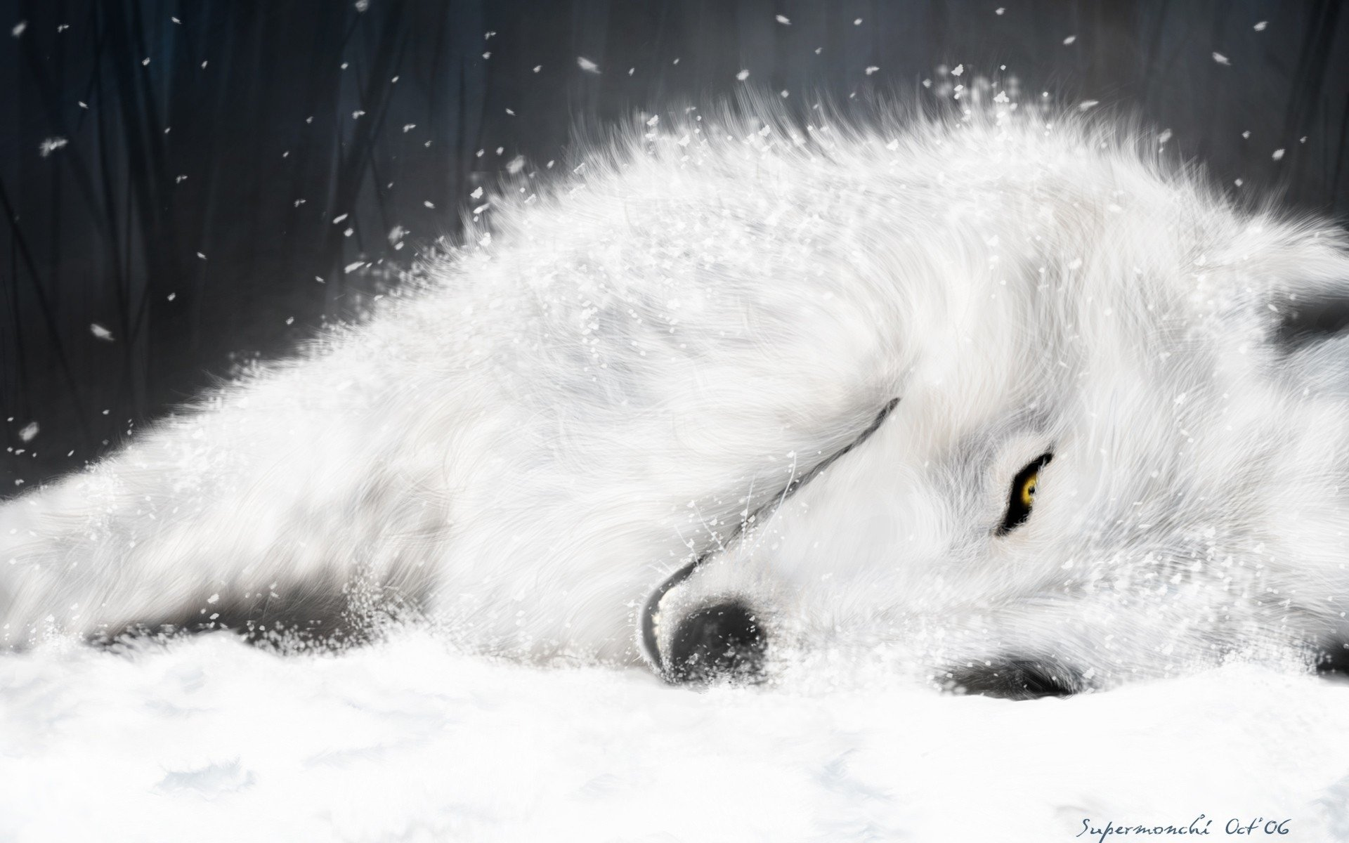 Wolf's Rain High Quality Background on Wallpapers Vista