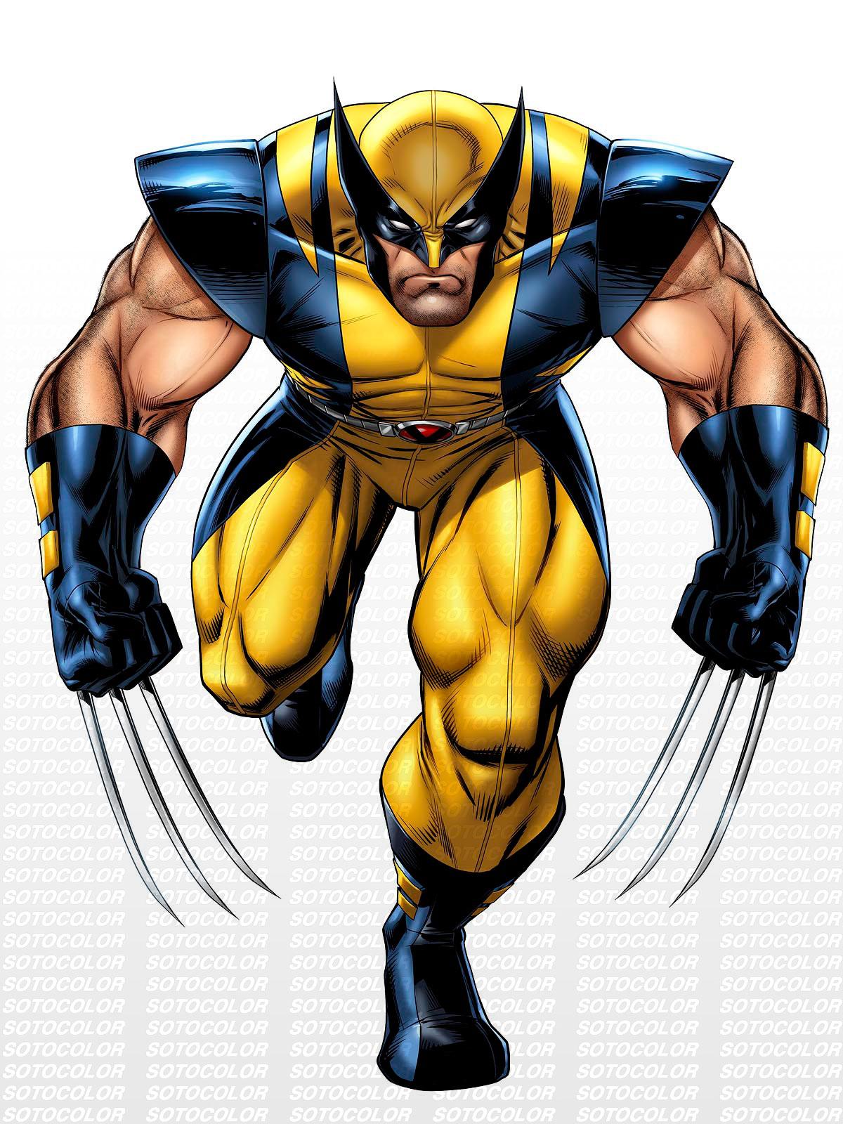 Wolverine Pics, Animal Collection