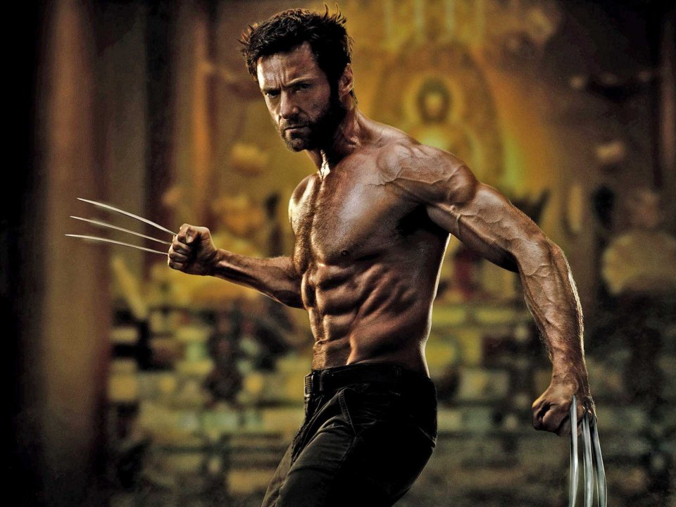 Nice wallpapers Wolverine 960x720px