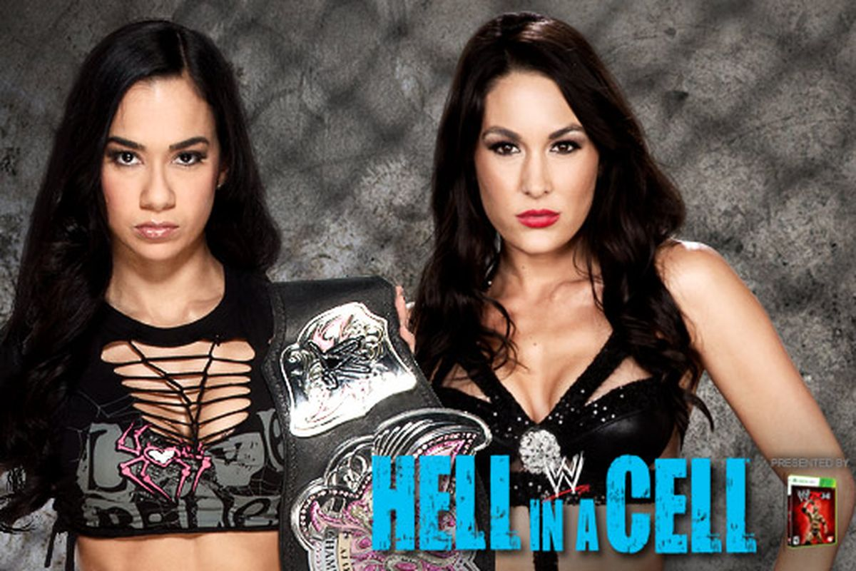 WWE Hell In A Cell 2013 Backgrounds, Compatible - PC, Mobile, Gadgets  1200x800 px