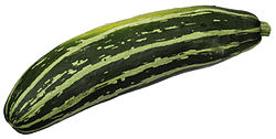 High Resolution Wallpaper | Zucchini 250x126 px