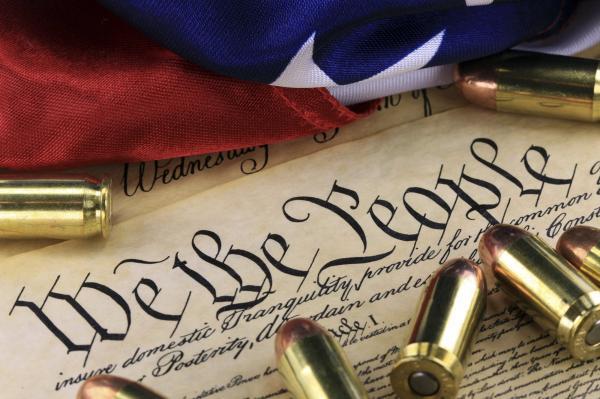 preview 2nd Amendment