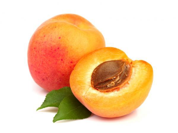 preview Apricot