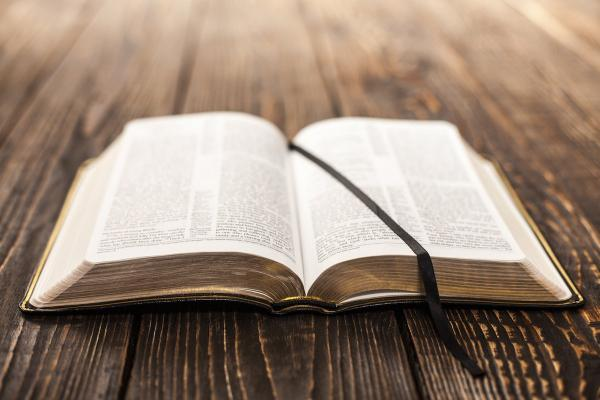 preview Bible