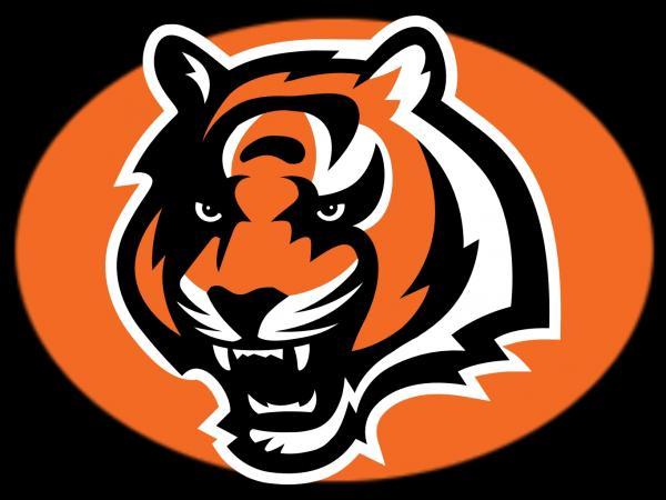 preview Cincinnati Bengals