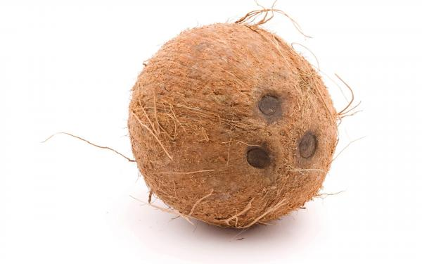 preview Coconut