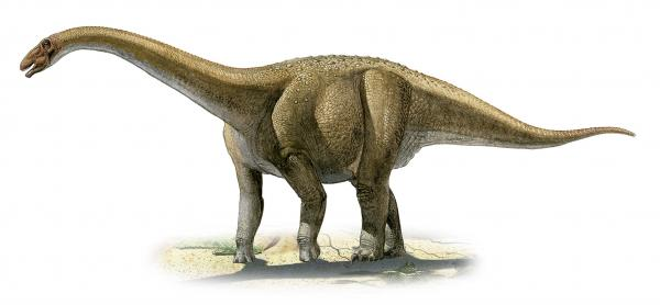 preview Dinosaur