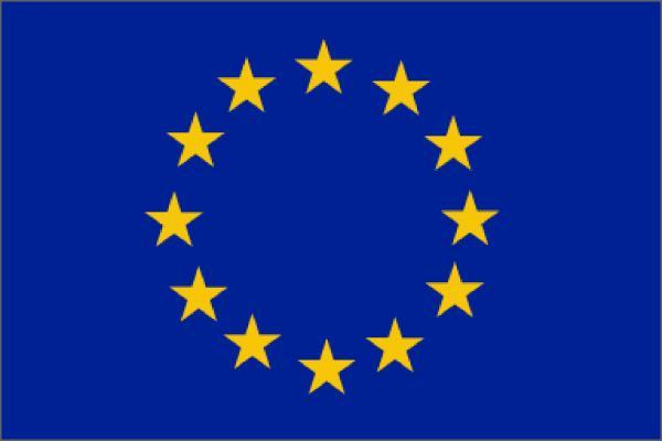preview European Union Flags