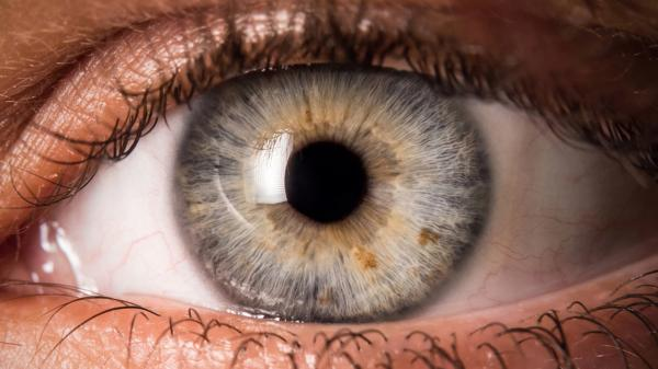 preview Eye
