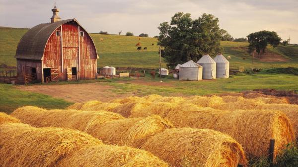 preview Farm