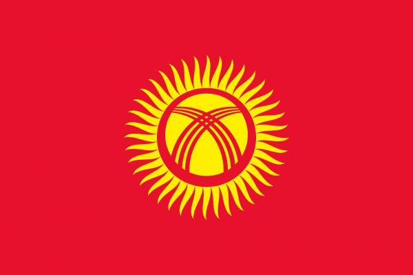 preview Flag Of Kyrgyzstan