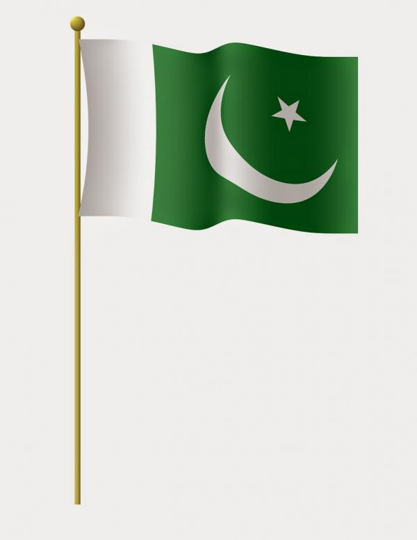 preview Flag Of Pakistan