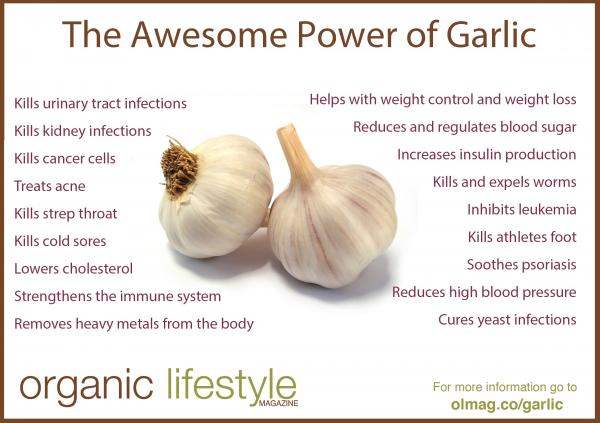 preview Garlic
