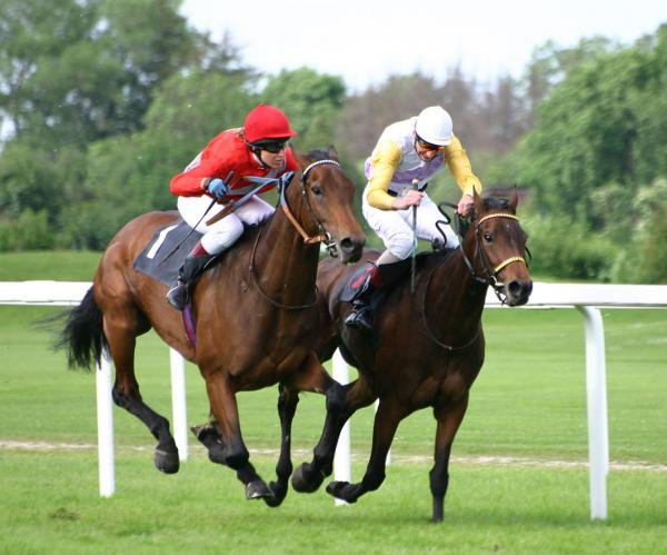 preview Horse Racing
