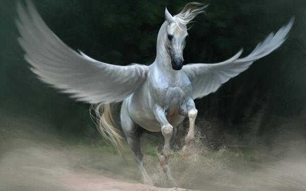 preview Pegasus