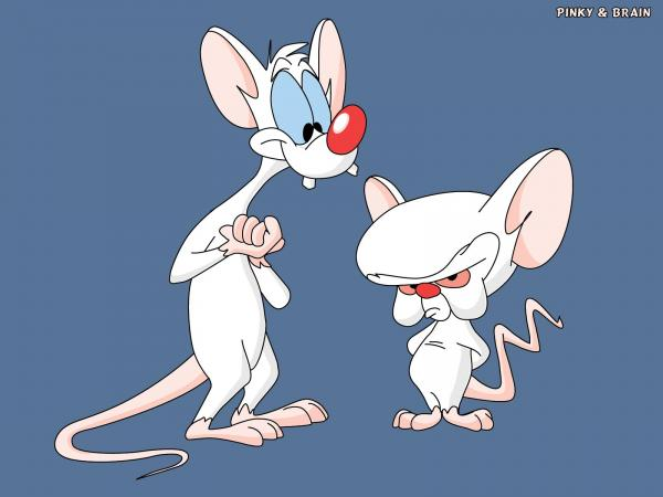 preview Pinky And The Brain