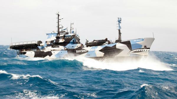 preview Sea Shepherd
