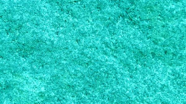preview Turquoise