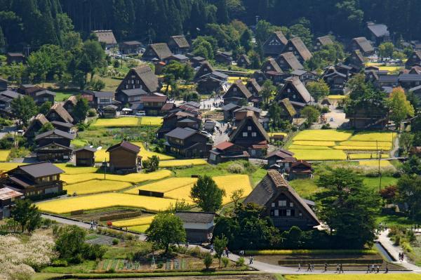 preview Shirakawa