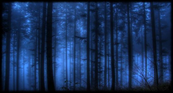 preview Wayward Pines